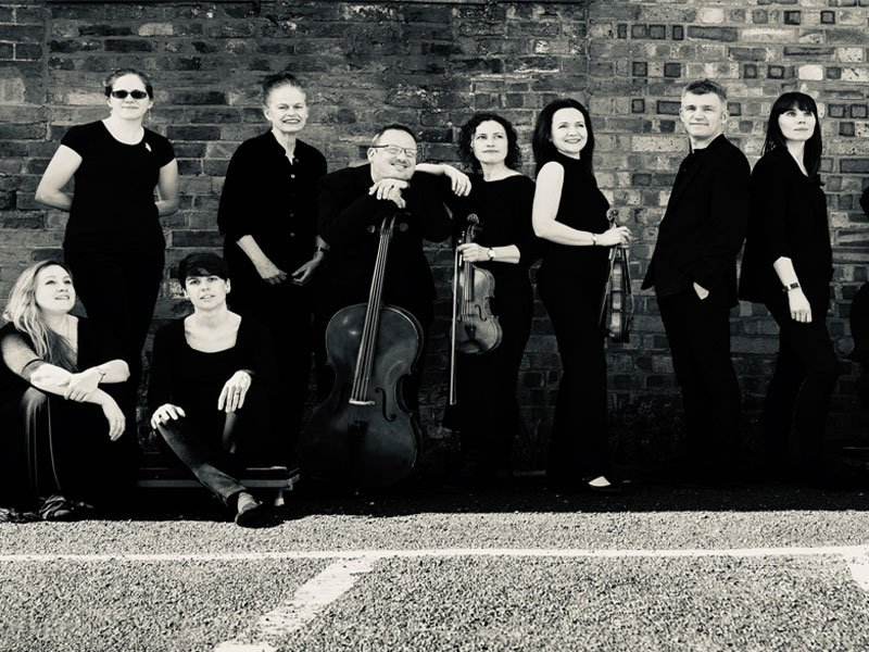 Group shot of Orchestra of the swan